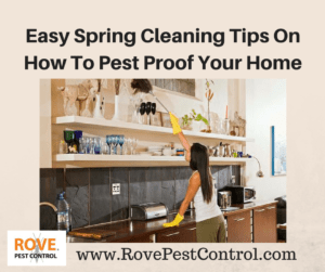 Spring Cleaning, how to pest proof your home, pest proof, pest proofing, pest proof your home