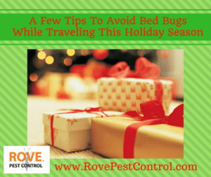 a-few-tips-to-avoid-bed-bugs-while-traveling-this-holiday-season, bed bugs, how to avoid bed bugs, getting rid of bed bugs, bed bug removal